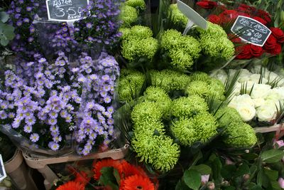 Columbia road flowers2