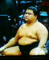 Fat_sumo
