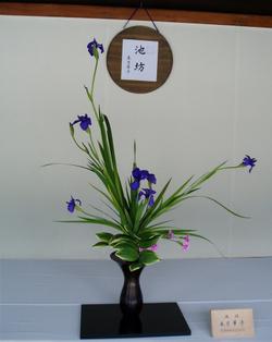 Ikebana_2_1